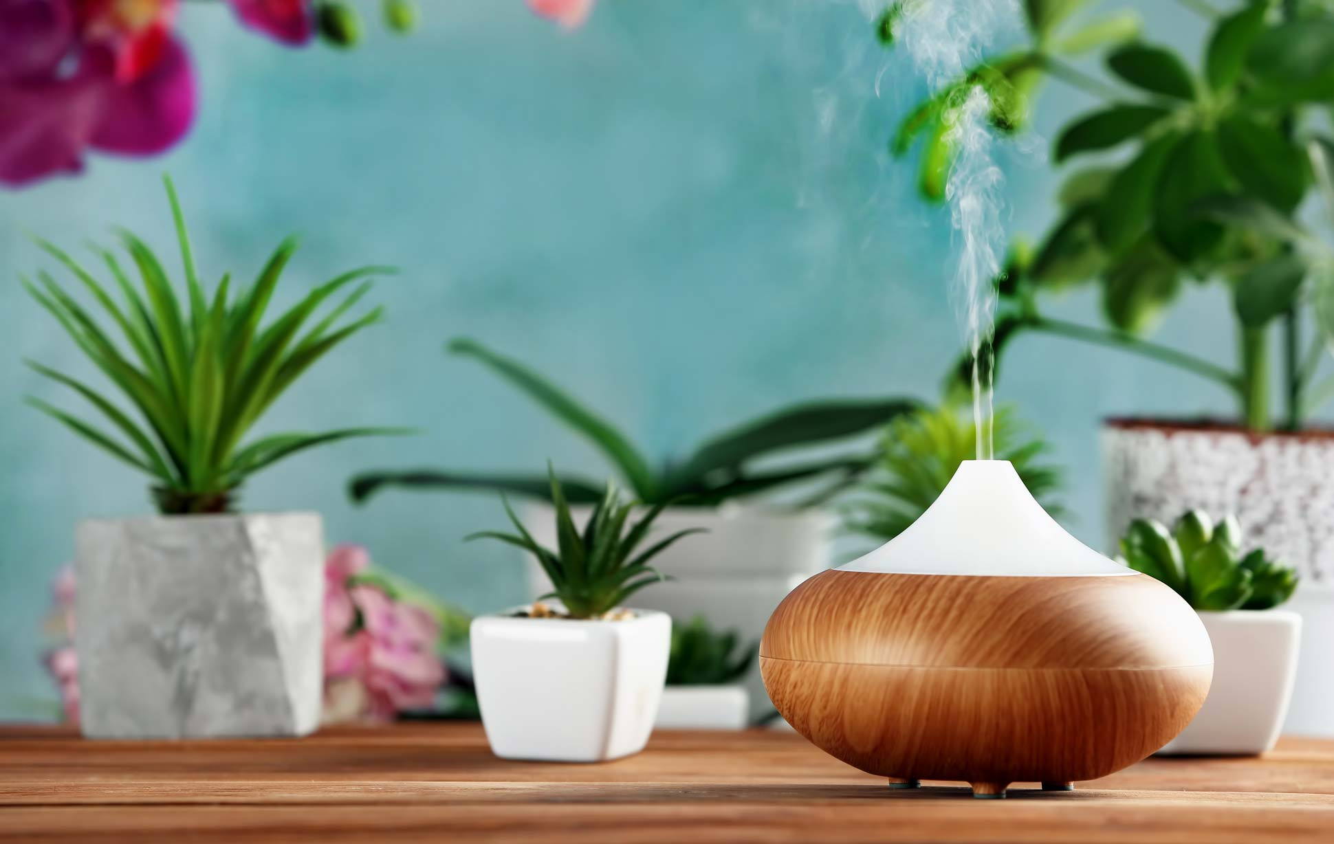 The Best Essential Oil Diffusers of 2019