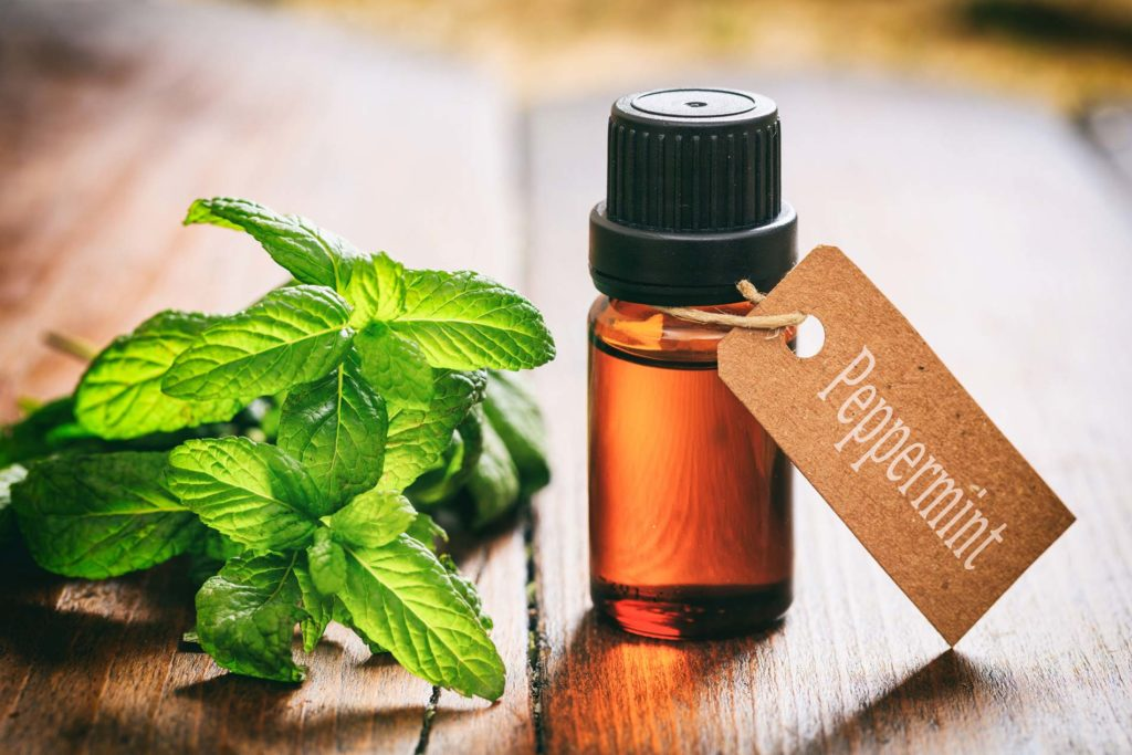 Best Essential Oils For Travel - Peppermint Essential Oil